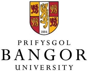 班戈大学的校徽
