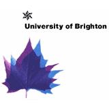布莱顿大学的校徽